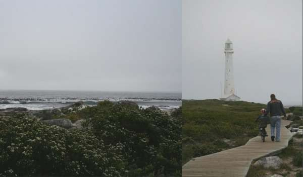 Weekend Wanderings – Kommetjie Lighthouse Boardwalk