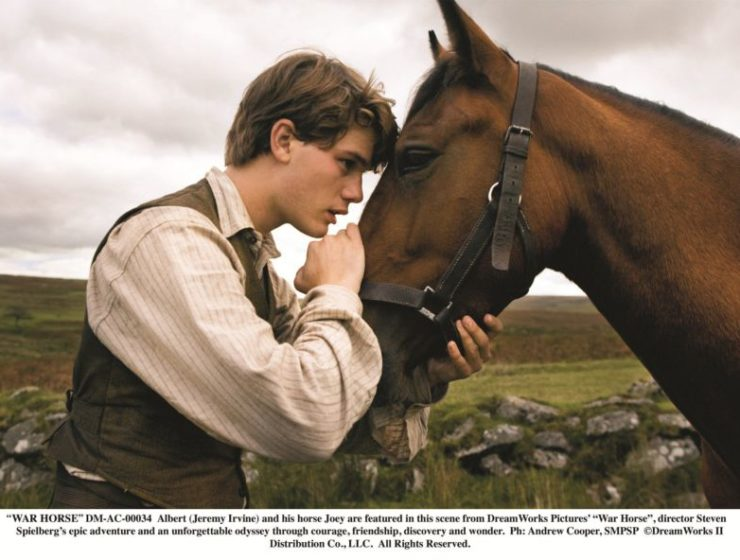 """""""WAR HORSE"""""""