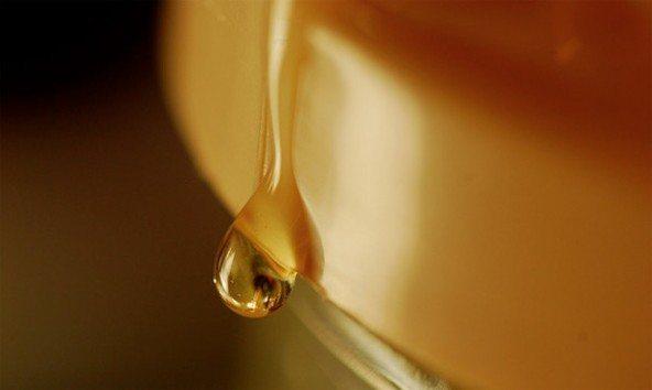 honey-592x354