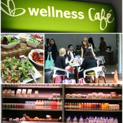 wellnesslaunch