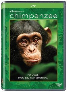 Chimpanzee DVD