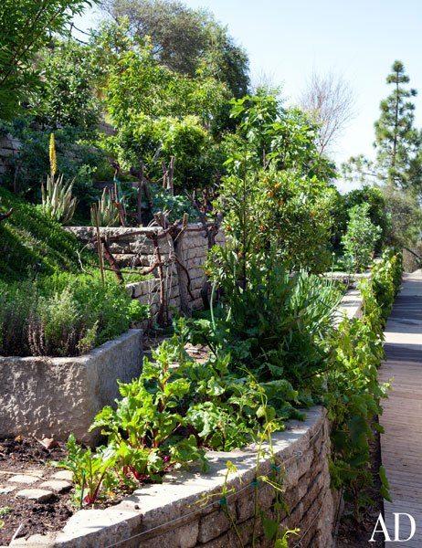 gisele-bundchen-garden