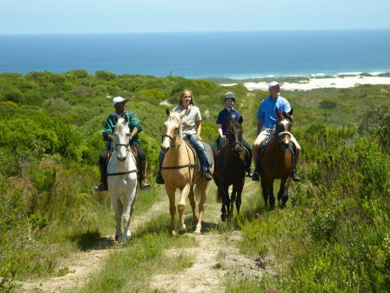 39-activity-horse-riding