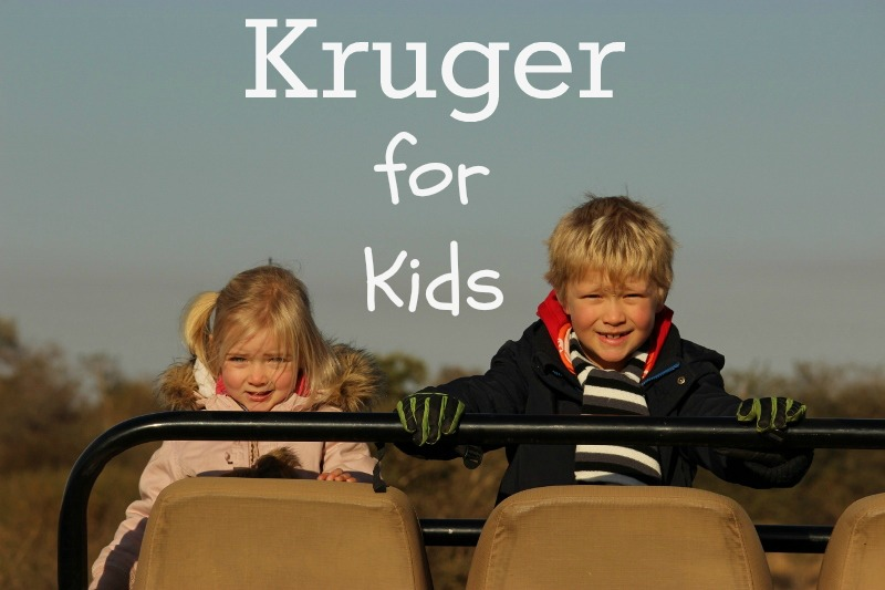 kruger for kids
