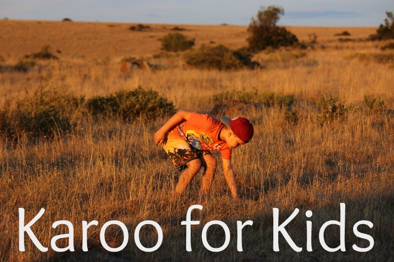 karoo_for_kids