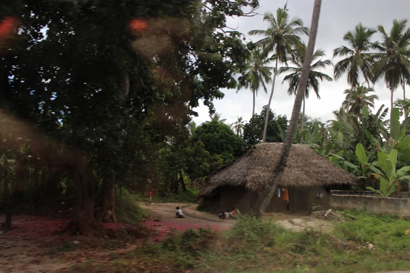 Village hut on the side of the road as we drive to Melia Hotel Zanziba