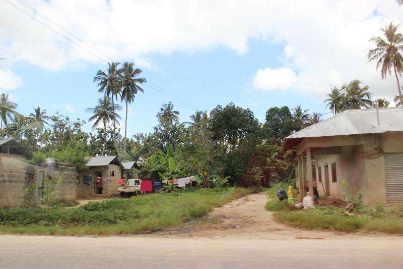 Local village on outskirts of Zanzibar