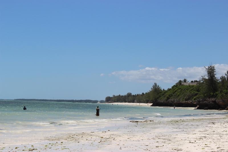 beach combing zanzibar