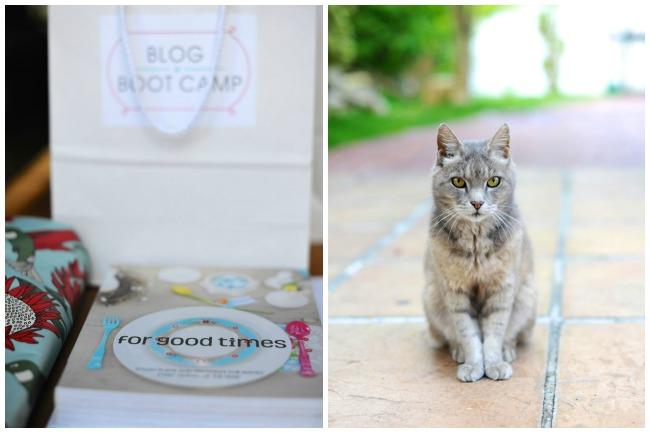blog boot camp 1