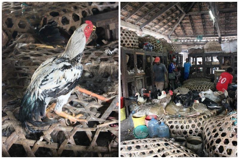 stone town chicken market