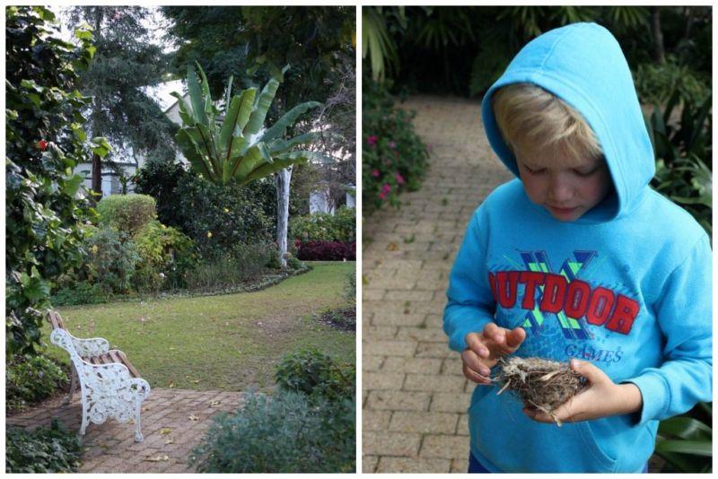van loeveren garden for kids