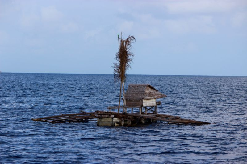 sea gypsies of Sulawesi