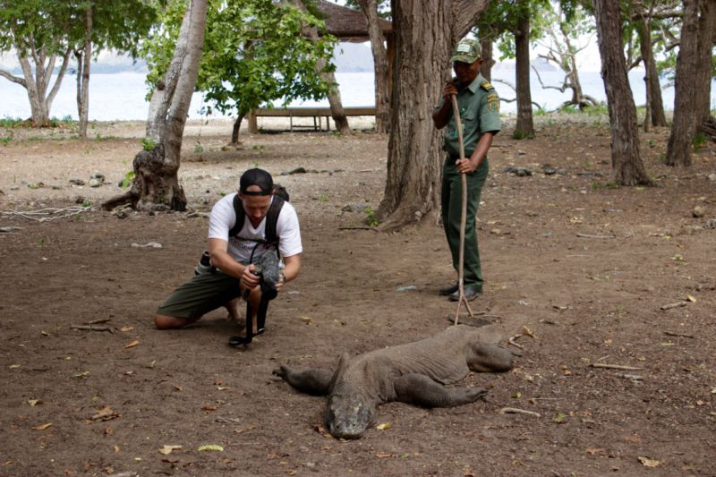 Komodo Island World Heritage Site