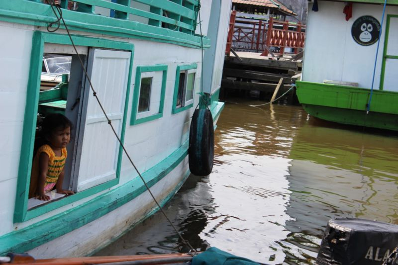 klotok boat