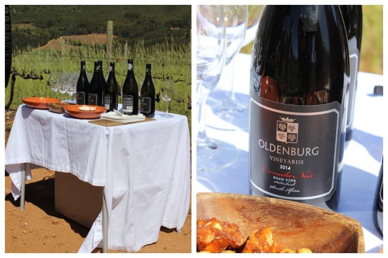 oldenburg-wines