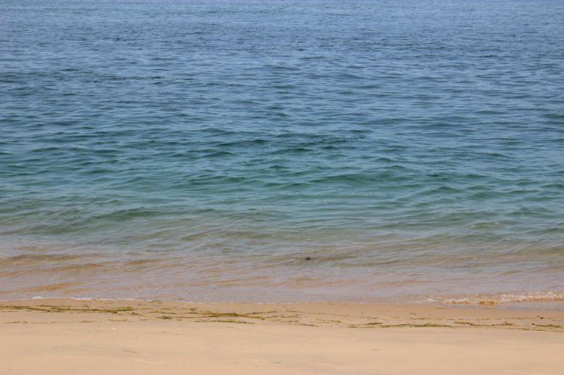 Portuguese Island