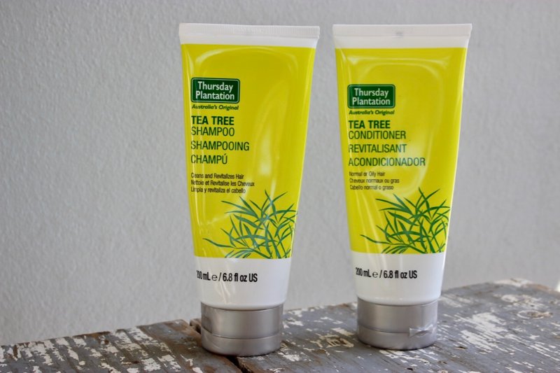 The Benefits of Tea Tree Oil & How to use it - Becoming you