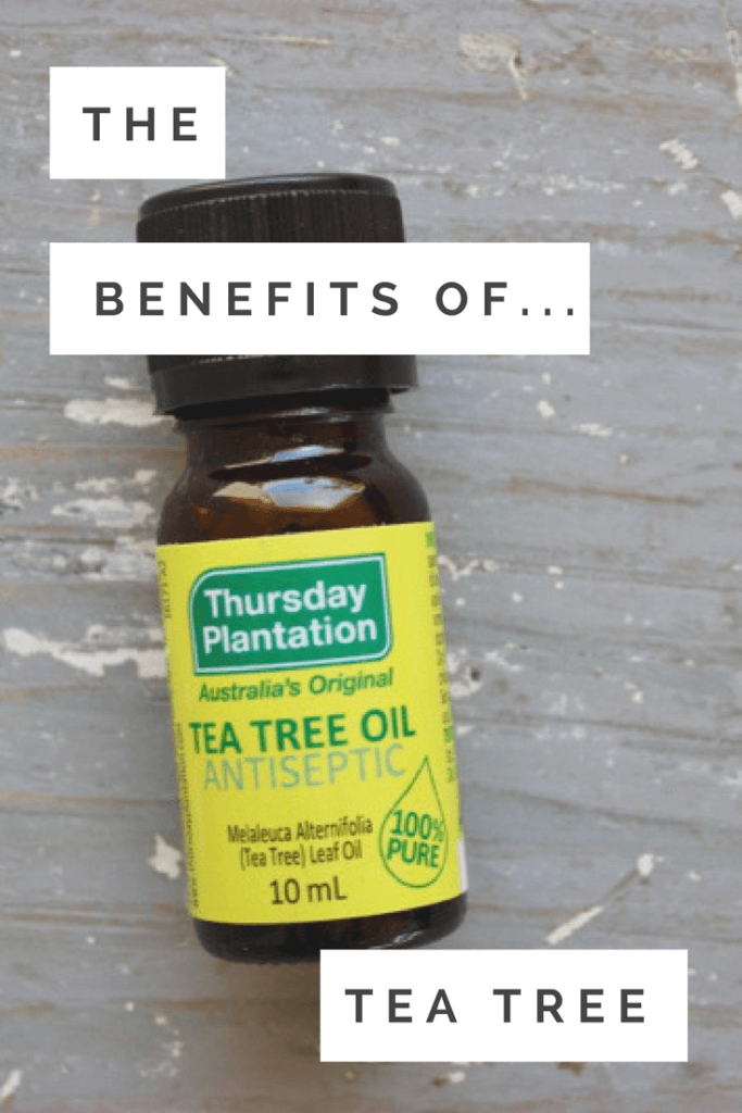 The Benefits Of Tea Tree Oil How To Use It Becoming You Lifestyle Blog