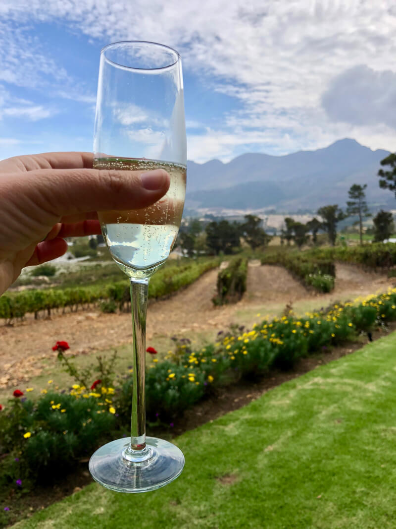 Holding a glass of MCC at La Petite Ferme in beautiful Franschhoek weather