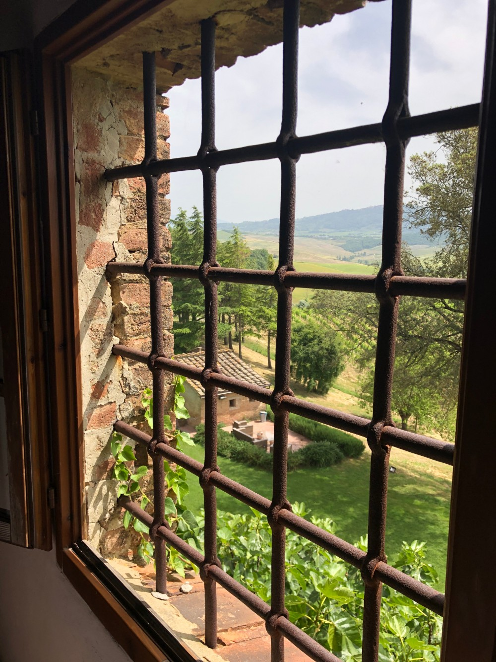 Medieval steel bar window overlooking the vineyards at castello tricerchi