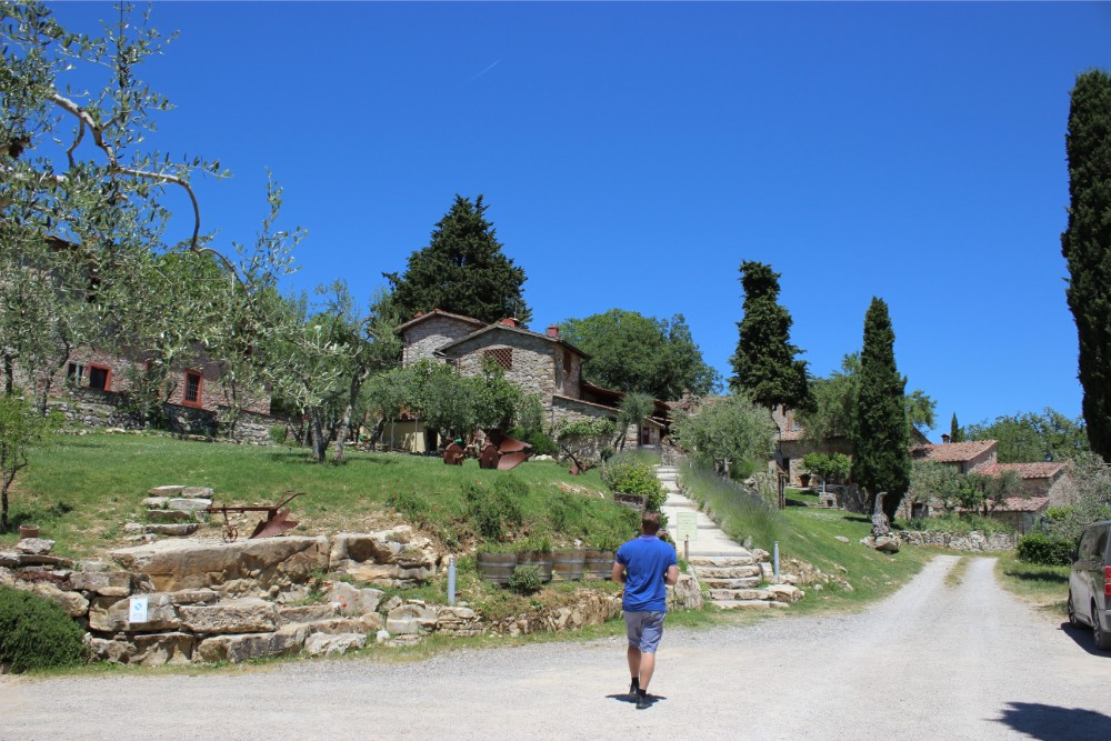 Walking up the driveway at Querceto di Castellina on a beautiful summers day