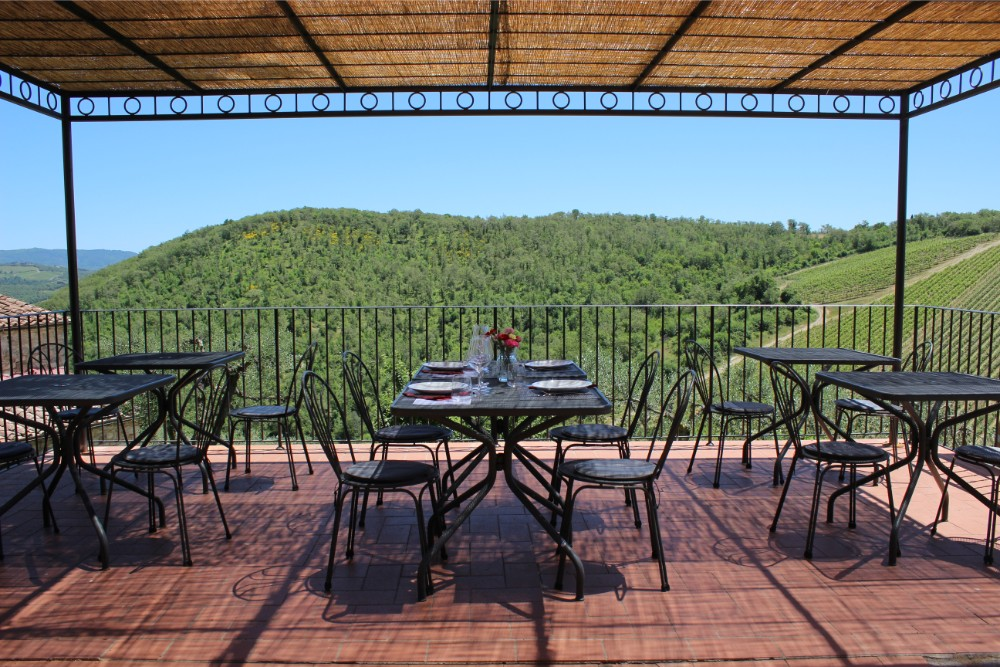 View over the vineyards from the patio at Querceto di Castellina